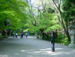 21 On the path to Katori shrine.jpg